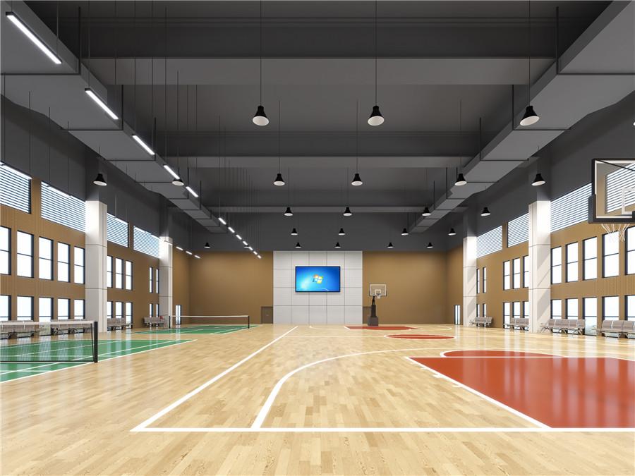 案例:湖南省纪检监察案件查办服务中心(篮球场、羽毛球运动场)